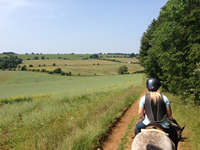 A first person view of the Cotswolds